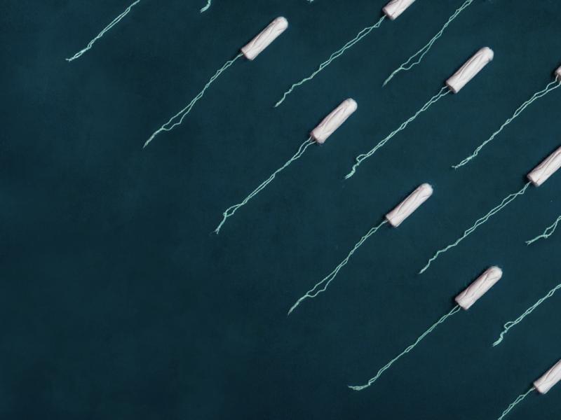 Productos para la Menstruación Descartables y Environ Menstrual Week